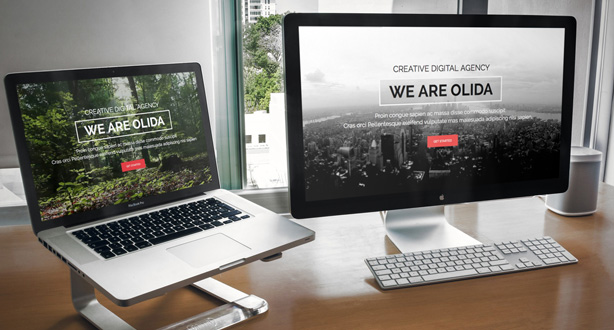 Olida - Creative Parallax One Page WP Theme - 1